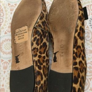 Ann Taylor Shoes - ANN TAYLOR Patricia Leopard Cheetah Haircalf